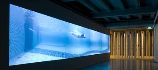 Swimming, by Matthew Ngui